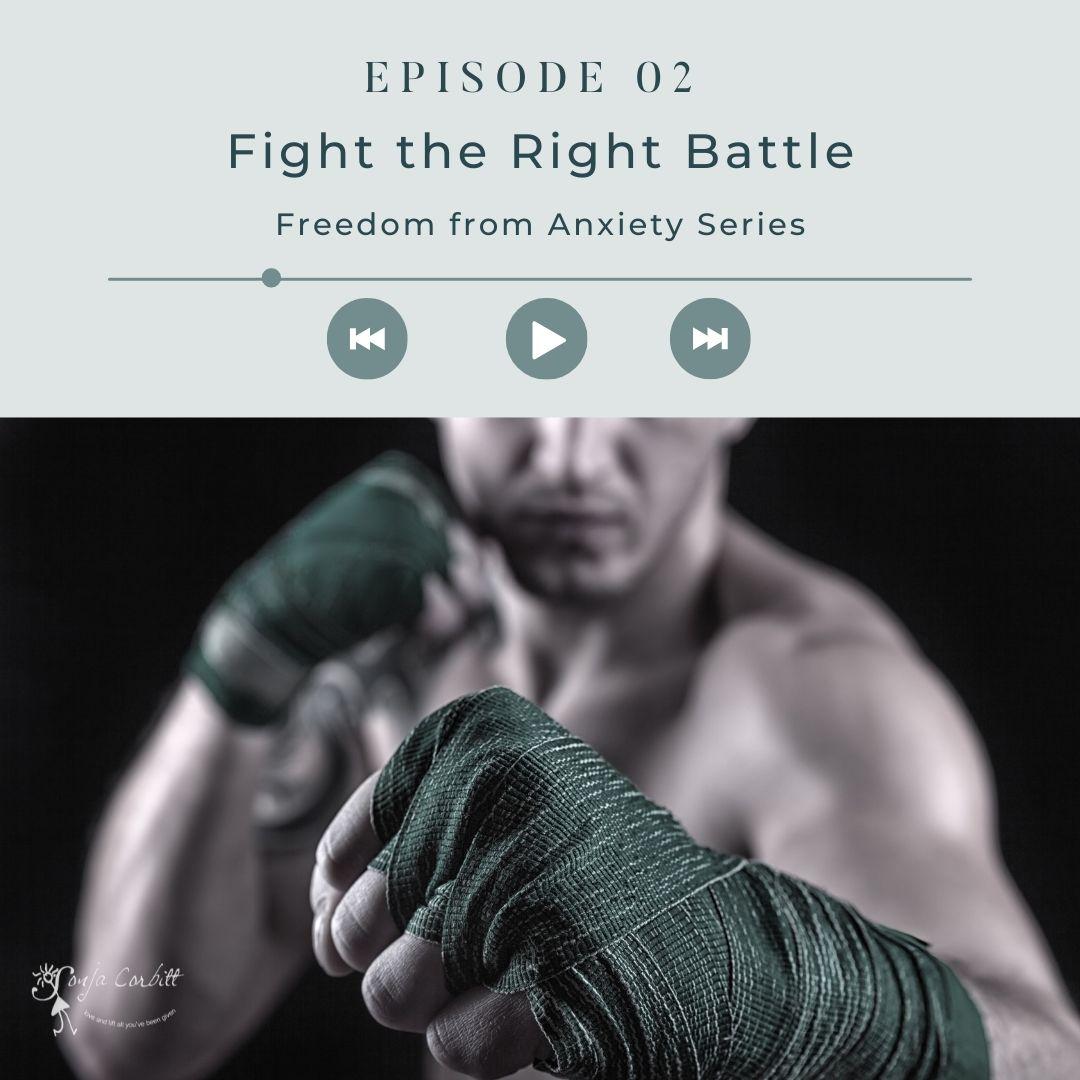 fight1.jpg